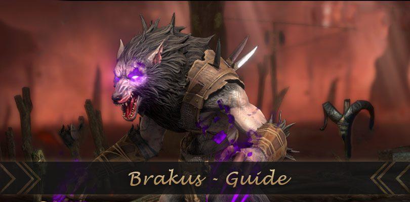 guide brakus raid shadow legends