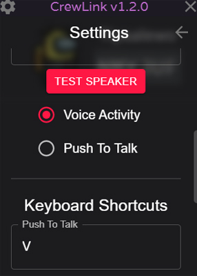 chat vocal Among Us settings