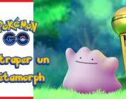 Wie fängt man Ditto in Pokémon GO